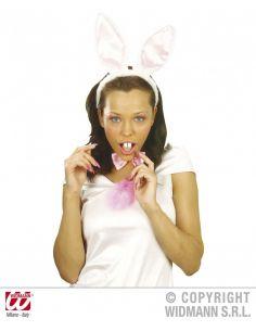 Dientes de conejo