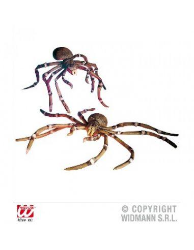 Arañas gigantes
